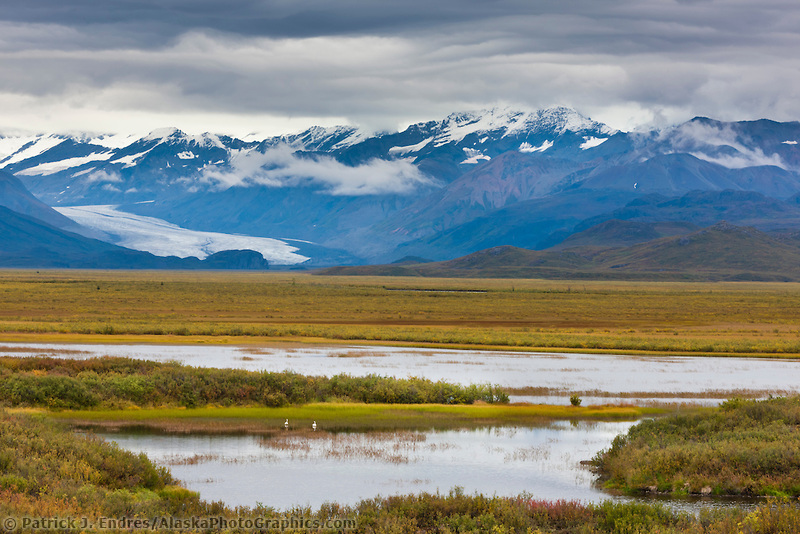 MaClaren glacier and Alaska range